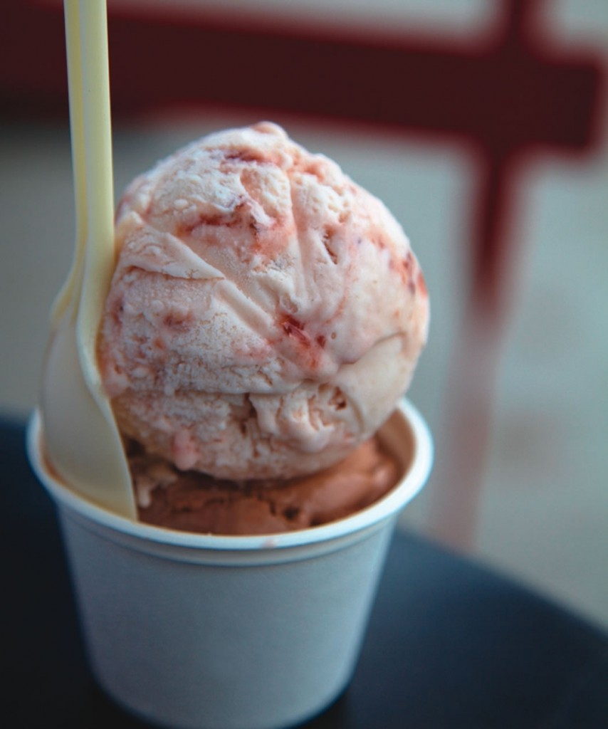 Heres Your Damn Strawberry - Humphrey Slocombe