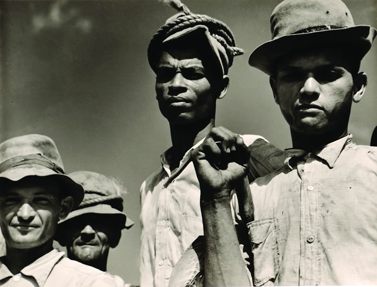 """""""Sugar Cane Workers on a Plantation"""" in the Arecibo vicinity by Jack Delano (1941) in """"Paradise and Words: A Dialogue Between Art and Literature in Puerto Rico"""" through Sept. 15 at Ponce Museum"""